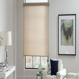 Roller Blinds Motorized Waterproof Outdoor Blind for Office and Home