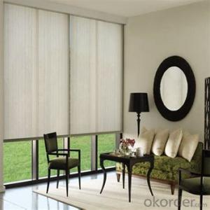 Roller Blind Motorized Waterproof Window Blind for Offices and Home