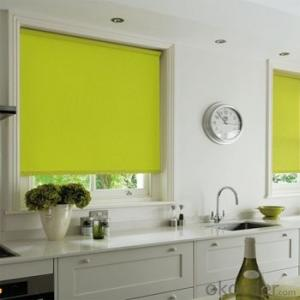 Roller Blinds Motorized Waterproof Windows Blinds for Offices and Homes