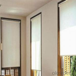 Roller Blinds and Outdoor Blind with Automatic Devices