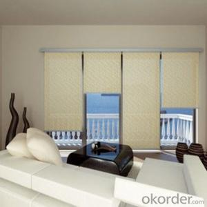 Blackout Popular Zebra Roller Blinds and Skylight Blind