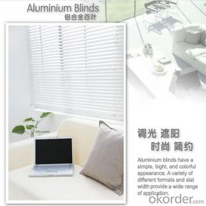 vertical and outdoor motorized roller blinds  in many style