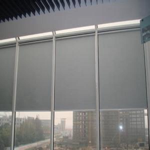 China Cassette Car Window Design Roller Blinds
