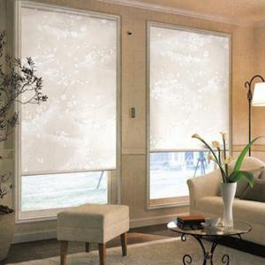 Clear Plastic Chain Control Roller Blinds