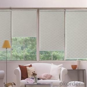 Roller Blind and Solar Blind Electric Outdoor Blinds