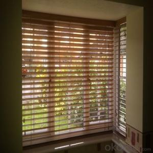Zebra Roller Blind and Outdoor Blinds with Automatic Devices