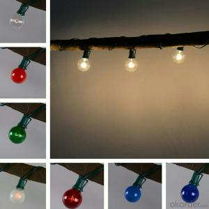 G40 Incandescent Bulb Led Light String for Outdoor Indoor Decoration with 25 Clear Bulb