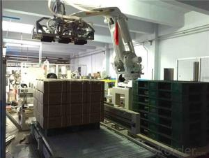 High Quality Carton palletizing machine made in China