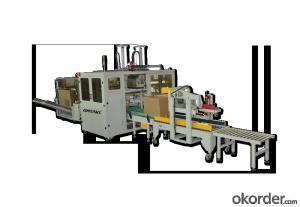 Low Price Automatic packaging line made in China