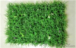 Soccer  Sport   flooring Plastic Floor Artificial Grass