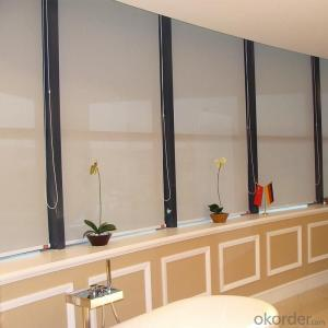 Screen Roller Blinds with Custom Size for Home Decoration