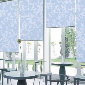 Hotsale roller blinds for window blackout