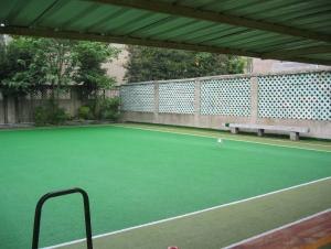 Artificial Grass Football /School Playground