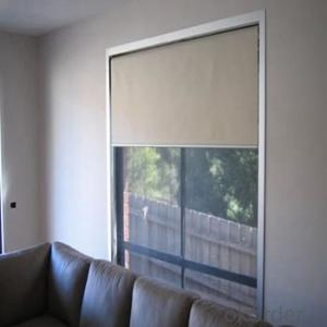 Zebra Roller Blinds Blackout with One Way Vision for Kitchens