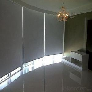 Double Roller Blind with Adjustable Window Screens