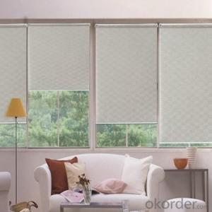 Double Roller Blinds with Adjustable Window Screens