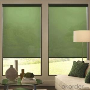 Zebra Roller Blinds Blackout with One Way Vision for Homes