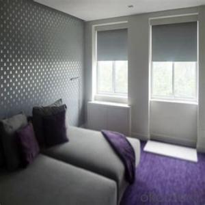 Roller Blinds Blackout with Tubular Motor for Windows