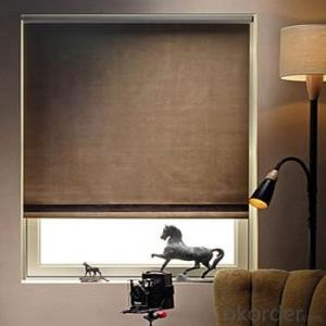 Zebra Roller Blind Blackout with One Way Vision for Home