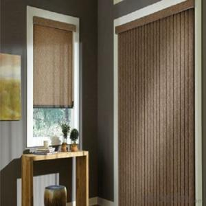 Roller Blind One Way Vision with Electric Motor