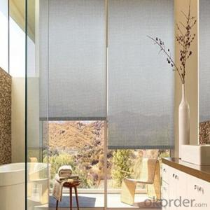 Roller Blinds Blackout One Way Vision with Electric Motor