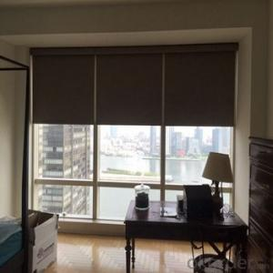 Roller Blind with Spring Loaded for Homes