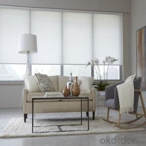 Roller Blinds Blackout with Tubular Motor for Window