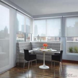 Roller Blinds One Way Vision with Electric Motor