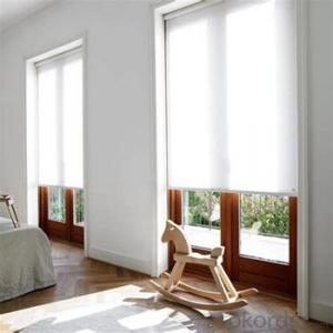 Double Roller Blinds with Adjustable Window Screen