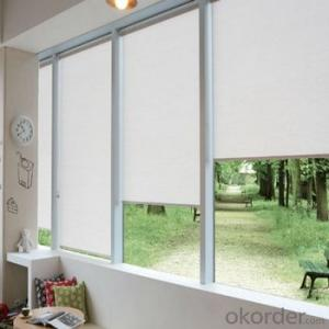 Zebra Roller Blind Blackout with Tubular Motor for Window