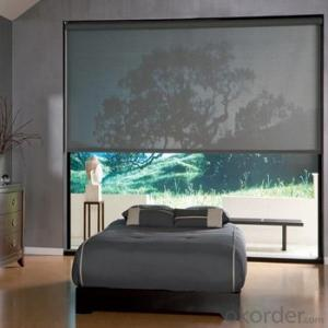 Zebra Roller Blinds Blackout with One Way Vision for Farmhouses