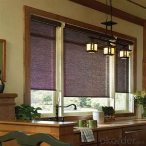 Motorized Roller Blind Blackout One Way Vision with Electric Motor