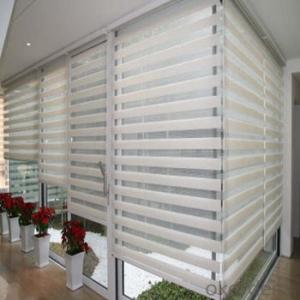 Roller Blinds Skylight with Remote Control for Shopping Malls