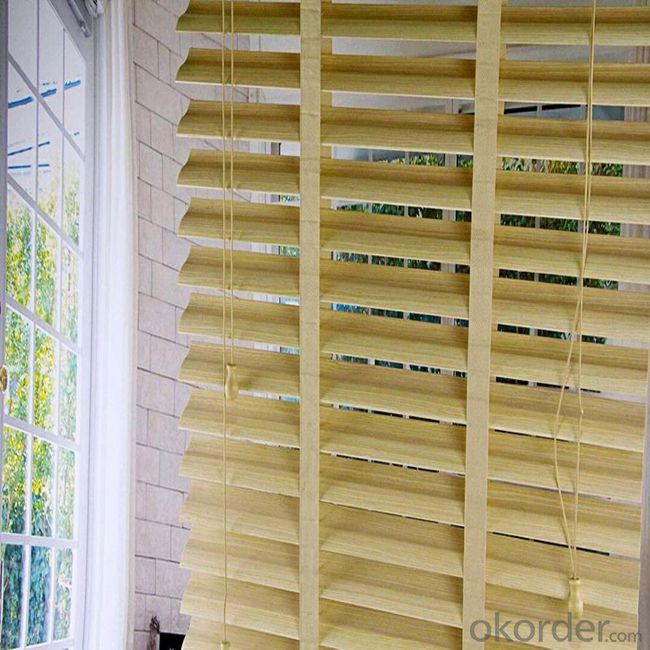Vertical Blinds Lowes Outdoor Shades