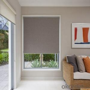Retractable Car Window Double Roller Blinds