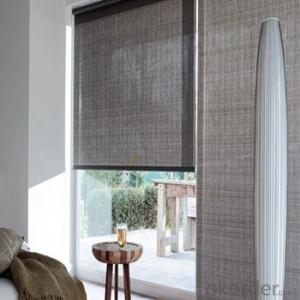 Electric Blinds Ceiling Roller Blinds for Top Floor Décor