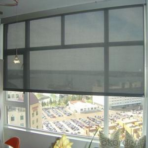 Motorized Zebra Roller Blinds with Blackout for Office and Home