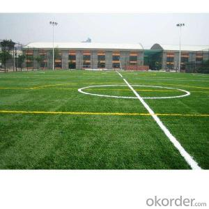 Soccer/Football Sport Flooring Plastic Floor Artificial Grass