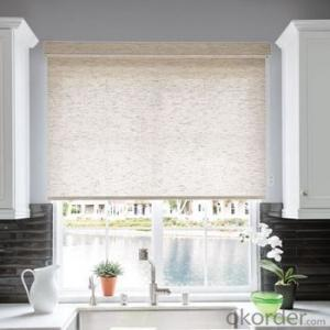 Roller Blind Picture Shower Room with Zipper