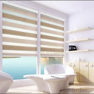 Zebra Shower Curtain Blind Shades Netting Sun