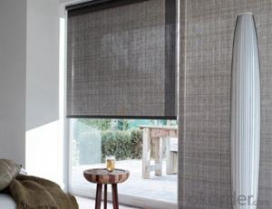 Adhesive Blackout And Transparent Roller Blinds