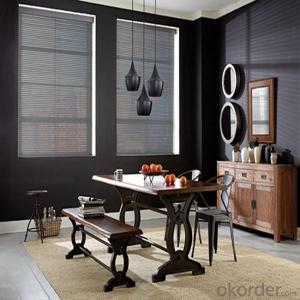 Exterior Doors Blackout And Transparent Roller Internal Blinds