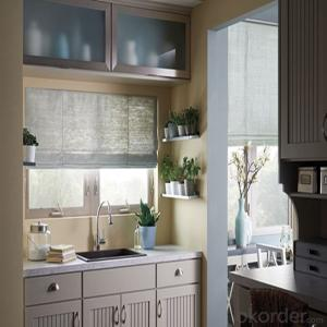 Spare Waterproof Roman Shades Roller Blinds