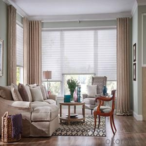 Spring Transparent  Roller Vertical Blinds