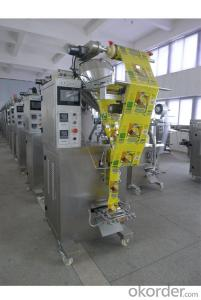 China High Quality Automatic Powder Packing Machine