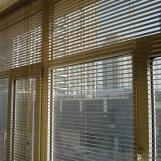 Blackout Window Blinds with New Design Style