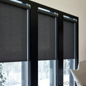 Waterproof Outdoor Blind Door Glass Inserts Blinds