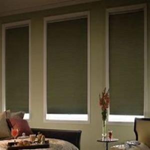 One Way Vision Roller Blinds Automated Vietnam Blinds
