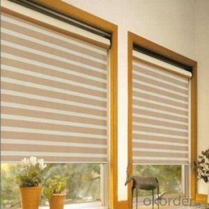 Outdoor Electric Blind Somfy Motorized Roller Blinds
