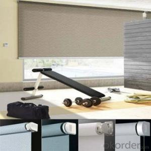 Somfy Roller Blinds Metal Chain From The Bottom Up Roller Blinds